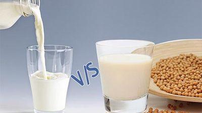 Sữa bò tốt hơn hay sữa đậu nành tốt hơn?