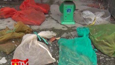 Đấu tranh quyết liệt với tội phạm buôn bán động vật hoang dã