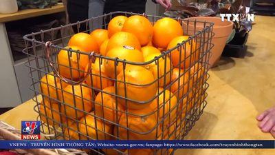 Bếp ăn từ thiện dành cho nhân viên liên bang Mỹ