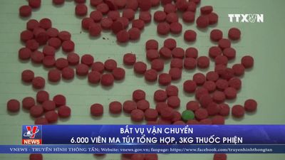 Bắt vụ vận chuyển 6000 viên ma túy tổng hợp, 3kg thuốc phiện
