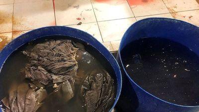 Cận cảnh cơ sở tẩy trắng phụ phẩm bò thối để bán cho quán nhậu