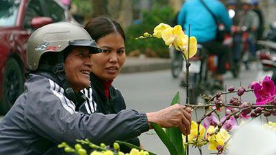 Ảnh, clip: Chợ cây cảnh lâu đời nhất nhì Hà Nội nhộn nhịp trước Tết