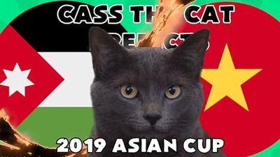 Từng đoán chính xác Việt Nam thắng Yemen, mèo tiên tri tiếp tục gây shock khi 'thánh dự' kết quả trận Việt Nam - Nhật Bản