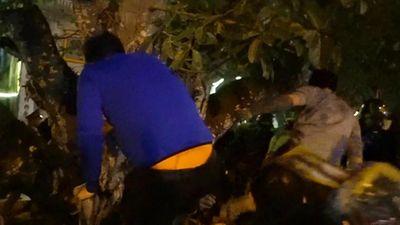 Lễ hội đền Trần: Phản cảm cảnh ồ ạt xé rào, leo trèo vào bên trong