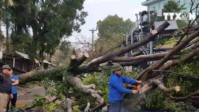 Giông lốc gây thiệt hại tại Thái Nguyên