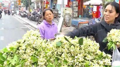 Gánh hàng rong bán hoa bưởi thu 6 triệu/ngày