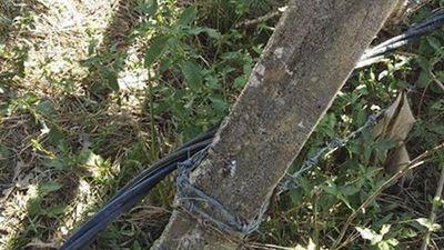 Vợ chồng nông dân bị điện giật từng cảnh báo hàng xóm nhưng lại chết oan