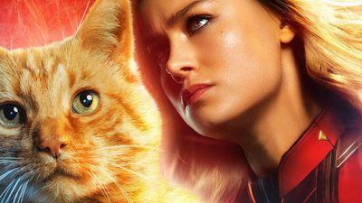 Đạo diễn 'Captain Marvel' tiết lộ về vai trò đặc biệt của mèo Goose