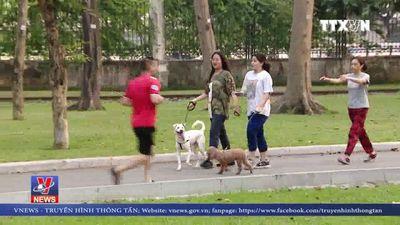 Vô tư thả rông chó dữ tại công viên