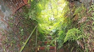 Bí ẩn khu hầm ngầm dưới đình cổ Quán La