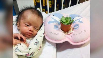 'Phép màu 30 ngày' của em bé sơ sinh bị treo trên cây