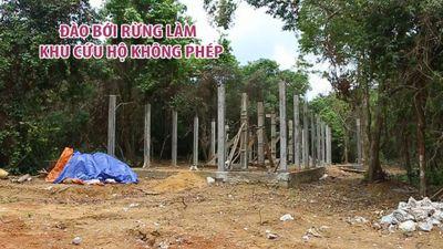 Đào bới rừng làm khu cứu hộ không phép