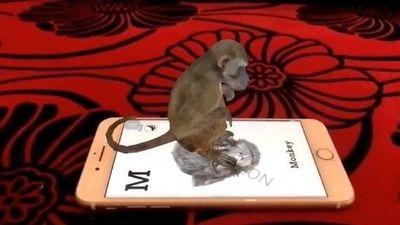 Dùng Animal 4D tạo con vật trên màn hình điện thoại như thế nào?
