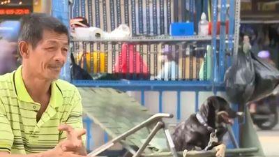 Ông lão nhặt ve chai kiếm tiền nuôi bầy chó tật nguyền