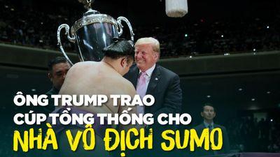 Tạm gác tranh cãi thương mại, ông Trump và ông Abe xem đấu sumo
