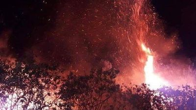 Đồi thông ở Hà Tĩnh bốc cháy ngùn ngụt