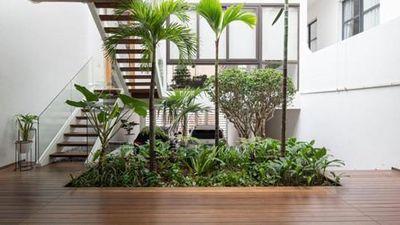 Nhà ống đơn giản tới...'thường thường' nhưng vẫn sở hữu khoảng vườn xanh đắt giá