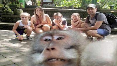 Khách chụp ảnh gia đình, khỉ 'thành tinh' lao đến chiếm sóng