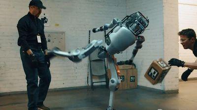 Video đáng sợ về robot tấn công con người