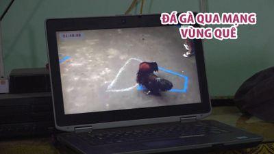 Phát hiện 11 người đàn ông vây quanh chiếc laptop xem... gà đánh nhau