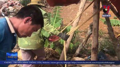 Khô hạn kéo dài, hơn 10.000 hộ dân Phú Yên thiếu nước