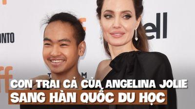 Angelina Jolie 'bịn rịn' chia tay con trai cả du học ở Hàn Quốc