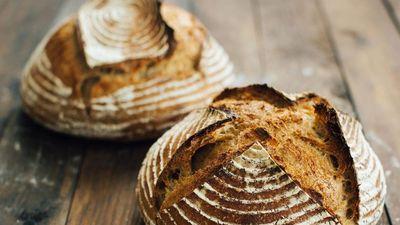 'Liều mình' ăn thử bánh mì làm từ men gốm 4.500 tuổi
