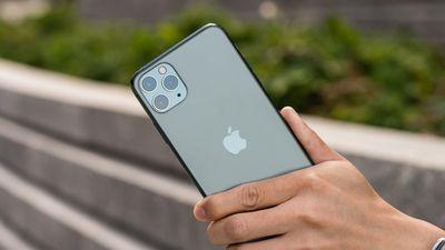 iPhone 11 loạn nhưng không 'ngáo giá' trong ngày đầu về Việt Nam