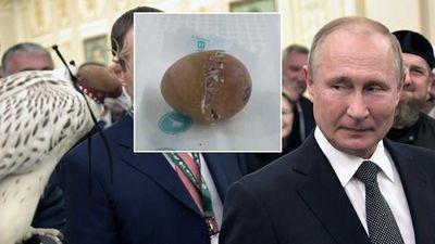 Nga công bố clip chim quý của TT Putin nở từ trong trứng