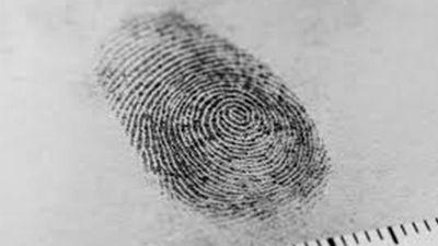 Dấu vân tay tội phạm được thu thập như thế nào?
