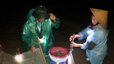 Người dân ven sông Lam Nghệ An trắng đêm dầm mưa rét, lội ruộng vớt 'lộc trời'