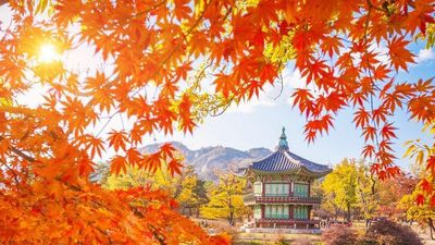 Hàn Quốc siết chặt chứng minh tài chính cho khách làm visa