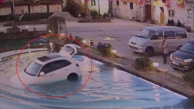 Chó lái ôtô của chủ lao xuống hồ nước