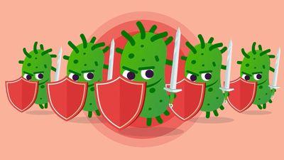 Đề kháng kháng sinh và những ảnh hưởng tới sức khỏe