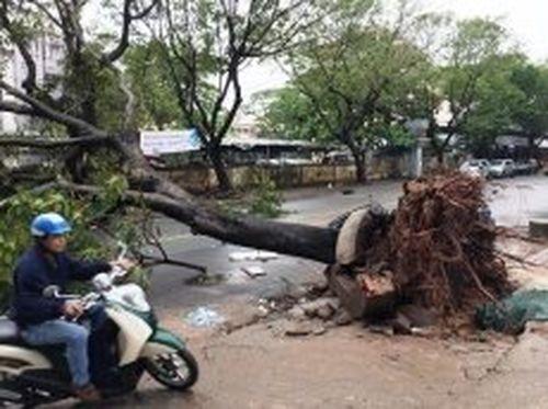TP Hồ Chí Minh kẹt xe, ngập nước sau bão số 9
