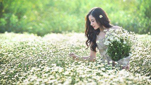 Gợi ý những địa điểm chụp cúc họa mi siêu đẹp tại Hà Nội