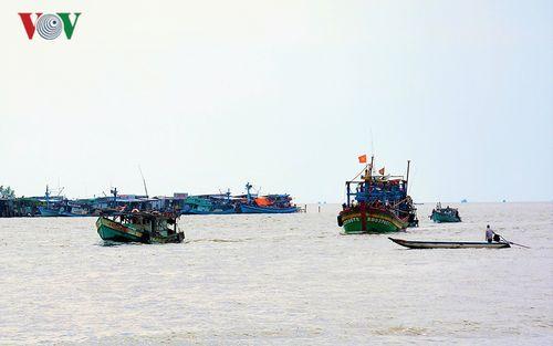 Ngư dân Cà Mau được mùa biển những ngày giáp Tết
