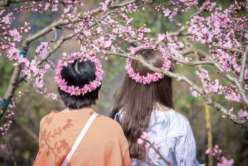 Đẹp mãn nhãn mùa xuân đến trên khắp thế giới