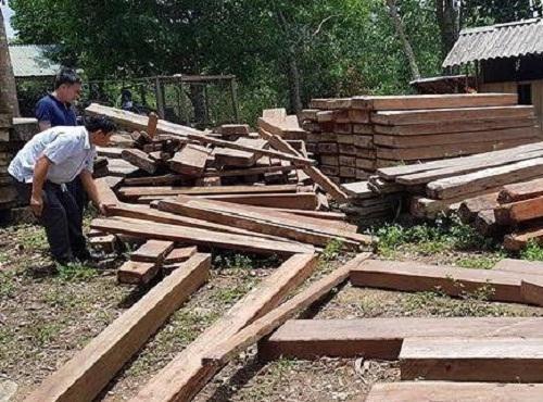 Quảng Bình: Điều tra số gỗ cất giấu trong trụ sở xã Trường Sơn