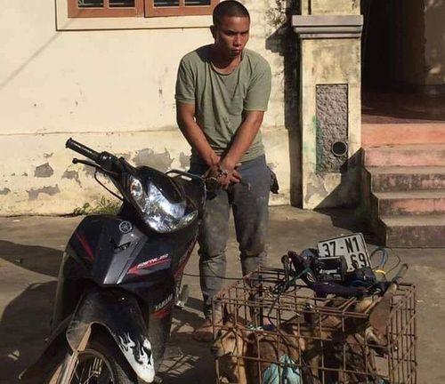 Tin tức ANTT ngày 7/6: Vây bắt 2 tên 'cẩu tặc' mang theo đao đi trộm chó