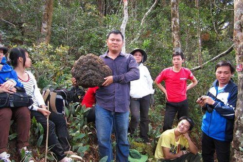 Lội rừng cùng chuyên gia nấm