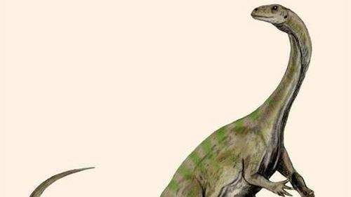 Phát hiện loài khủng long mới khá lạ ở châu Phi