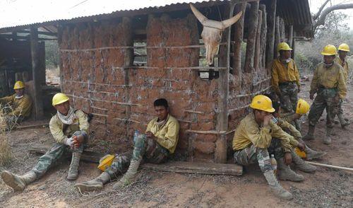 Hai nhân viên cứu hỏa thiệt mạng khi dập lửa rừng Amazon