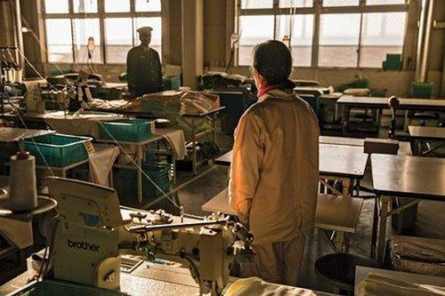 Ngày càng nhiều người già ở Nhật Bản cố tình phạm tội để được vào tù sống