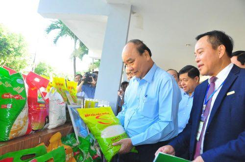 Thủ tướng Nguyễn Xuân Phúc: Xử lý nghiêm đối tượng lừa đảo xuất khẩu lao động