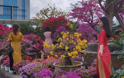 Rực rỡ sắc màu chợ hoa Tết Đà Nẵng