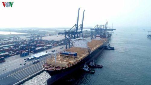 Toàn bộ tàu từ Trung Quốc đến Hải Phòng phải làm kiểm dịch tại Hòn Dấu