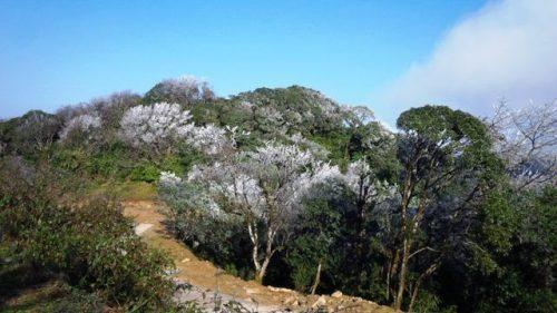 Vườn quốc gia Phia Oắc - Phia Đén