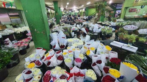 Khám phá chợ hoa lớn nhất Đông Nam Á giữa thủ đô Jakarta (Indonesia)