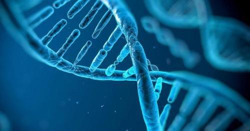 Khám phá bí ẩn về 2 mã gen có khả năng giúp con người chống lại quá trình lão hóa